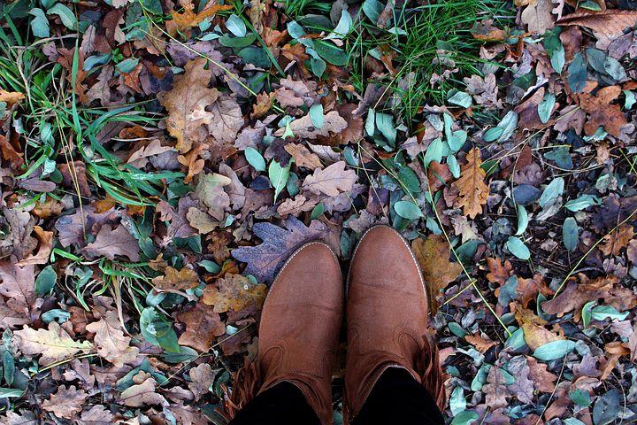 autumn-1893232__480